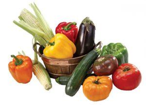 الباذنجان والفلفل والطماطم